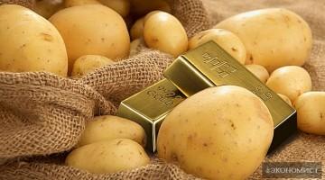 Картофельный индекс. Возьмем ли новую планку