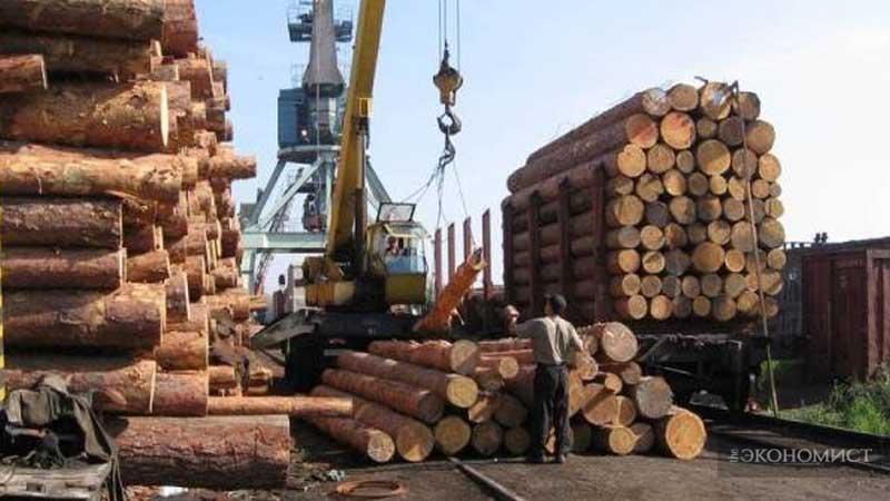ЕС снова требует снятия моратория на экспорт леса-кругляка