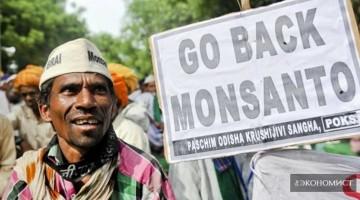 ГМО от Monsanto угрожают жизни на Земле