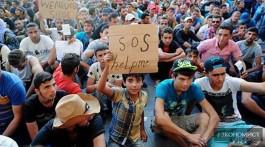міграційна політика